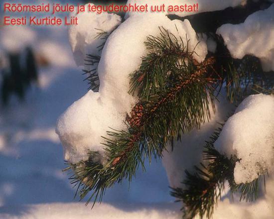 Jõulutervitus